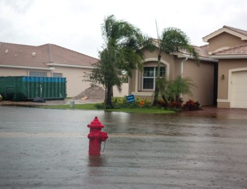 Surviving Hurricane Season in South Florida